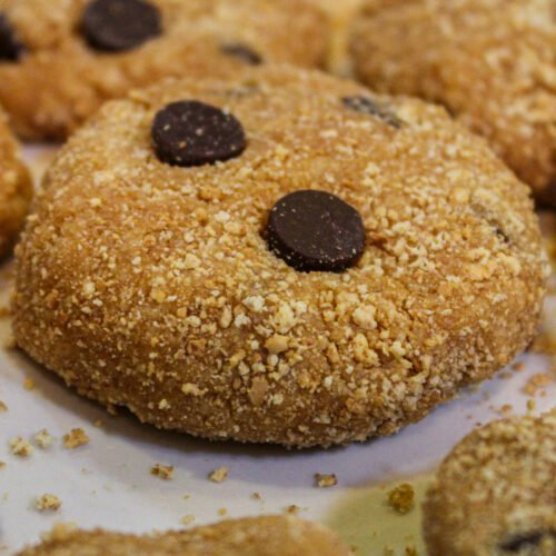 Chocolate Chip Cookie Dough Protein Bites Recipe